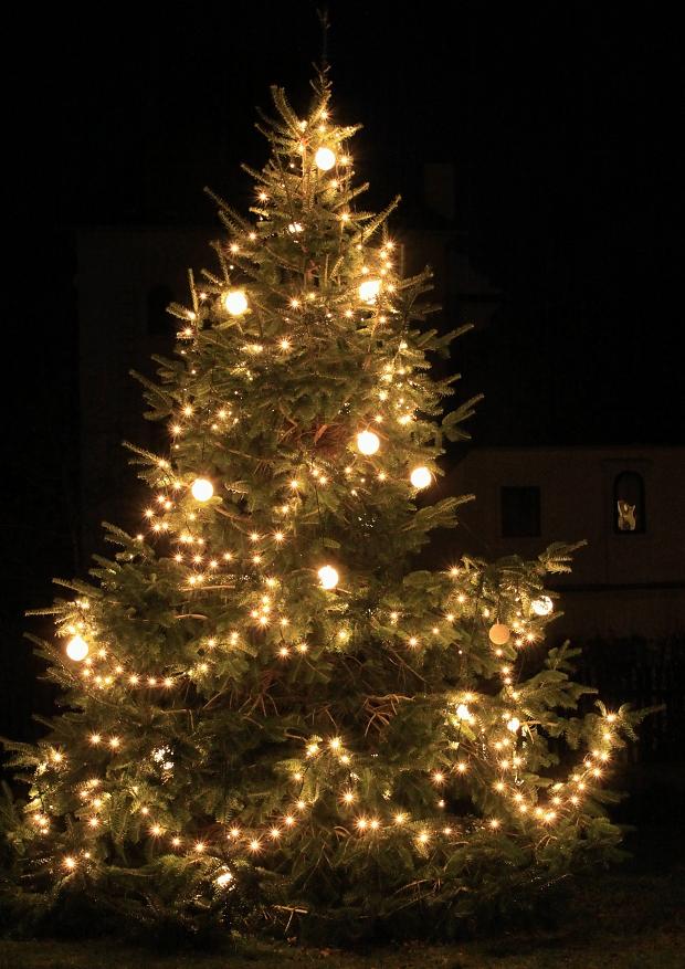 nezdický strom